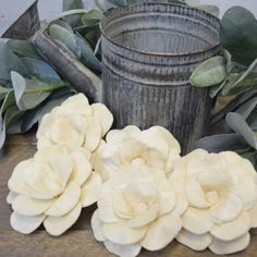 Sola Camelia Flowers- available in two sizes, dye-able to any custom color for all of your decorating! These are high quality wood flowers that will last in your arrangements or bouquets for years! Check them out now! #solaflowers #woodflowers #diyhomedecor #diycrafts #weddinginspiration #weddingflowers #ecoflowers #foreverflowers #diyflowers #homedecor #weddingbouquet #diycrafts #craftidea #diyproject #artproject #doityourself #ifeelcrafty #getcreative #crea