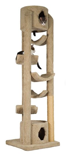 Molly and Friends Pinnacle Cat Tree - 86 in. >>> You can get more details here (This is an amazon affiliate link. I may earn commission from it)