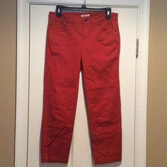 Burnt Orange Capris Stretch Jean material Jones New York Pants