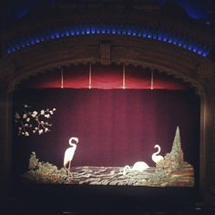 New Zealand Film Festival love at the amazing Civic theatre for On The Road.