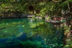 Picturesque Picnic Spots to Dine Al Fresco This Summer: Riviera Maya, Mexico - The underground rivers and cenotes aka swimming holes of Mexico are an endlessly compelling attraction for visitors, and resorts lucky enough to have a cenote on-property usually build some kind of visitor experience around it. All the better if it's swimmable. Sandos Caracol in the Riviera Maya has a particularly lovely limpid green-blue cenote, which is not only a special-occasion picnic site.