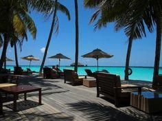 The Sun Siyam Iru Fushi Maldives, Iru-fushi Picture: Water edge Bar - Check out TripAdvisor members' 1,856 candid photos and videos.