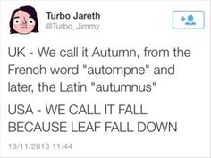 """UK - We call it Autumn, from the French world """"autompne"""" and later, the Latin """"autumnus"""" USA - We call if fall because leaf fall down."""