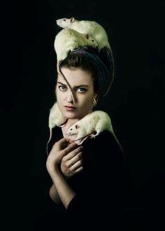 21 Dreams of Rats Meaning - Dreaming of Dead Rats Rat Queens, Animals And Pets, Cute Animals, Killing Rats, Dumbo Rat, Fancy Rat, Cute Rats, Poses, Rodents