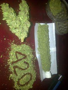 Smoking weed is great Medical Marijuana, Thc Oil, Rauch Fotografie, Fille Gangsta, Stoner Art, Weed Art, Stoner Girl, Stoner Humor, Smoking Weed