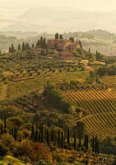 Tuscany Landscapes, San Gimignano | Italy