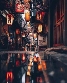 Traveling through Japan from Tokyo, Kyoto, and Osaka, including stays in Shinjuku and Harajuku Aesthetic Japan, City Aesthetic, Japanese Aesthetic, Urban Aesthetic, Japon Tokyo, Aesthetic Backgrounds, Aesthetic Wallpapers, Street Photography, Art Photography