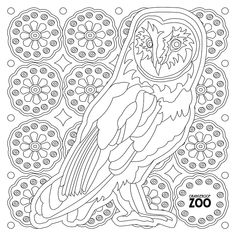 Forest Creatures Come A Live In This Adult Coloring Book Want