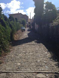 https://flic.kr/p/hwT7aa | IMG_2061 | Sentiero Levanto-Monterosso