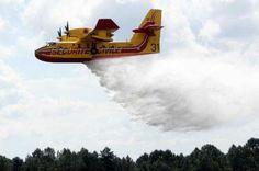 Canadair qui largue l'eau sur un feu de fôret