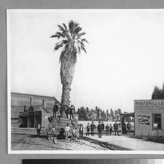 Fifth Street and Central Avenue, Los Angeles. :: Photographs