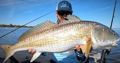 How To Catch BIG Redfish On tiny Lures (Even If They're Extra Spooky)
