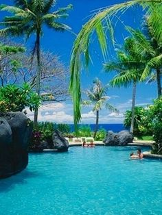 Download Island Home And Pool Mobile Wallpaper