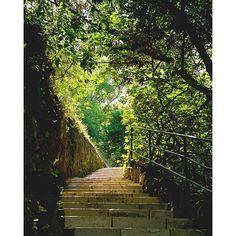#Rocher Stairs to Palais Princier, Monte Carlo. by joshuanewton1 from #Montecarlo #Monaco