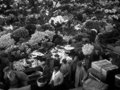 La destruction des Halles de Paris date de 1971