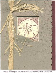 Sand Dollar Shaker by pamelak - Cards and Paper Crafts at Splitcoaststampers Scrapbook Paper Crafts, Scrapbooking, Nautical Cards, Beach Cards, Hilton Head Island, Shaker Cards, Masculine Cards, Beach Themes, Card Ideas