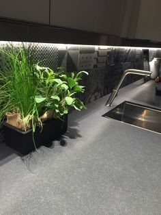 Closer look at the refined Maistri kitchens - Decoist
