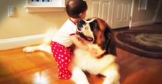 And Lila JUST figured out that she could hug her favorite pup! And watching the joy unfolded is pure goodness! Cute Animals Puppies, Cute Baby Animals, Cute Animal Videos, Cute Animal Pictures, Baby Hug, Animal Tumblr, Christmas Mom, Cute Animal Drawings, Cute Gif