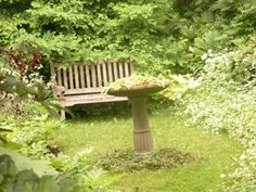 Creating Seating Areas in Your Garden: Secluded, Cool and Probably Never Used: I get the feeling this bench doesn't see much action, since it's being taken over by the plants. Still, it looks inviting, doesn't it?  You can include seating areas in tucked away sections of the garden. Even if you don't get a chance to sit for a couple of years, one day you stumble on it with fresh eyes, after the initial plantings fill in and integrate themselves in the setting, and it becomes your favorite…