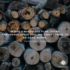 """Divine Providence often uses the tiniest twigs to do good works."" #dailyeSpiration from Bl. Pier Giorgio Frassati"
