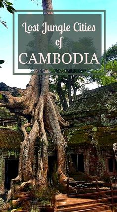Read about what to see in 3 days around Siem Reap. Angkor Wat and Jungle Temples.