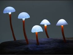 Japanese designer Yukio Takano puts the 'fun' in 'fungi' with lamps that look like whimsical, glowing mushrooms. Make your bedroom enchanting at night!