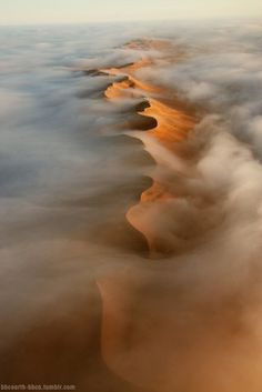 "bbcearth-bbca: "" An aerial view of Namib desert dunes. The dunes receive very little by way of rain, sometimes years pass between showers, but an almost daily cloak of vaporous fog provides just..."