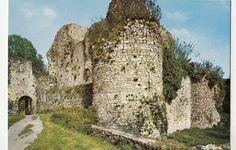 http://www.ebay.com/itm/BF15489-sainte-suzanne-mayenn-entree-du-vieux-chateau-france-front-back-image-/121637929031?pt=LH_DefaultDomain_3
