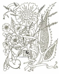 Paisley flowers, adult coloring pages