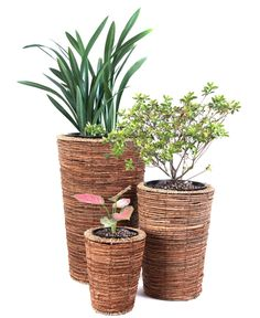 Composed out of banana rope, these floor planters offer strong protection to keep plants in. The floor planters can be used to decorate rooms, doorways, and entryways to make use of an empty area. Wicker Planter, Planter Pots, Floor Plants, Pot Sets, Home Decor Outlet, Plant Decor, Decorative Accessories, Fall Decor, Flooring