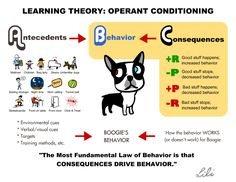 Operant and classical conditioning for high-welfare animal training