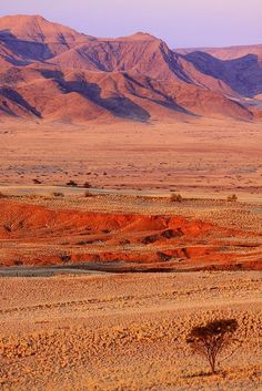 The dry deserts of the Namib Naukluft Park Deserts Of The World, Namib Desert, Namibia, Les Continents, Out Of Africa, Africa Travel, Adventure Is Out There, Landscape Photos, Solo Travel