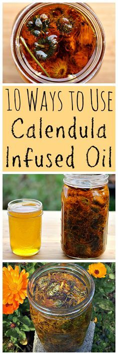 Calendula infused oil is wonderful herbal medicine, especially for the skin. Learn how to use this healing infused oil!