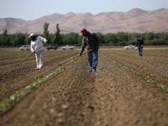 A lot of top-producing farmers are getting older — and it presents an opportunity for big-money investors Severe Weather, Extreme Weather, Farmers Walk, Pearl City, Heart Of America, Food Insecurity, Greenhouse Gases, Photosynthesis, Science And Technology