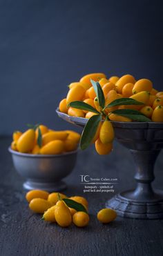 It's at this time of year that kumquat trees are bearing their olive-sized fruits in abundance. The height of its season coincides with the Lunar New Year (Chinese New Year).