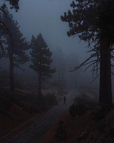 Nature Ealk~the moonlight chess society Night Aesthetic, Nature Aesthetic, Dark Paradise, Dark Photography, Dark Forest, The Villain, Pretty Pictures, Aesthetic Pictures, Aesthetic Wallpapers