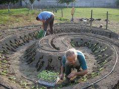 L'orto sinergico e l'agricoltura a misura d'uomo