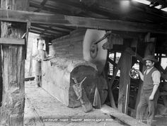 Workplace safety - Milling a kauri log:The upper and lower circular saw blades in this small sawmill, around 1900, have no guards on them to protect the mill workers. The man in front is adjusting the position of the log while the man at the other end pulls the sawn slabs, or flitches, to one side.