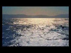 A Legszebb Dalok/Jimmy 3 Nature Gif, Nature Videos, Dolphins, Just Love, Waves, Ocean, World, Awesome, Beach