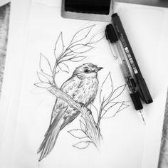 #bird #ink #pencil #drawing #essitattoo #tattooart #natureart #linework #tatuointi #tatuoinnit #blacktattooart #tattoodesign #tattoodrawing #illustration #art #blxckink #blackink #art_we_inspire #instaartist #artistoninstagram