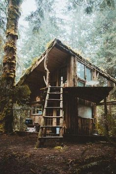 If you need to get away....try this rustic cabin in the woods!