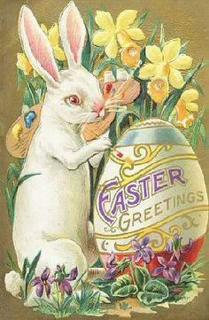 Easter Greetings, White rabbit
