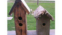 Diy: Birdhouses