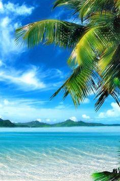 64 Ideas beachy wallpaper iphone summer tropical for 2019 Strand Wallpaper, Beachy Wallpaper, Summer Wallpaper, Nature Wallpaper, Nature Beach, All Nature, Ocean Beach, Iphone Wallpaper Travel, Games Tattoo