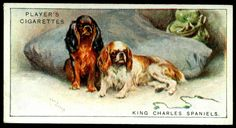 """https://flic.kr/p/nhr2VT 