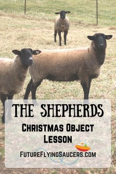 The Shepherds Christmas Object Lesson - How come God chose to have the shepherds be a part of the event of Jesus' birth? Christmas Sunday School Lessons, Kids Church Lessons, Sunday School Projects, Sunday School Curriculum, Sunday School Activities, Bible Lessons For Kids, Bible Activities, School Ideas, Youth Lessons