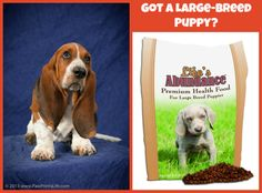 Got a Large-Breed Puppy? One that will be 50 lbs or more as an adult? Life's Abundance Large-Breed Puppy Food is PERFECT! Click here! http://www.lifesabundance.com/Pets/Puppy/PuppyFoodLargeBreed.aspx?realname=20012124