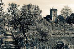 St Nicholas Church Kemerton. Church and garden. Cotswold. -