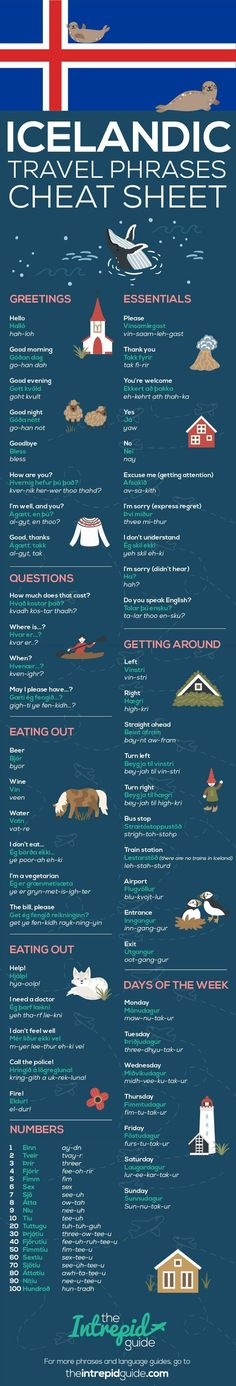 Common Icelandic Travel Phrases Infographic #EducationalInfographics