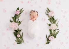 Tampa Newborn Photography Portfolio - Kelly Kristine Photography